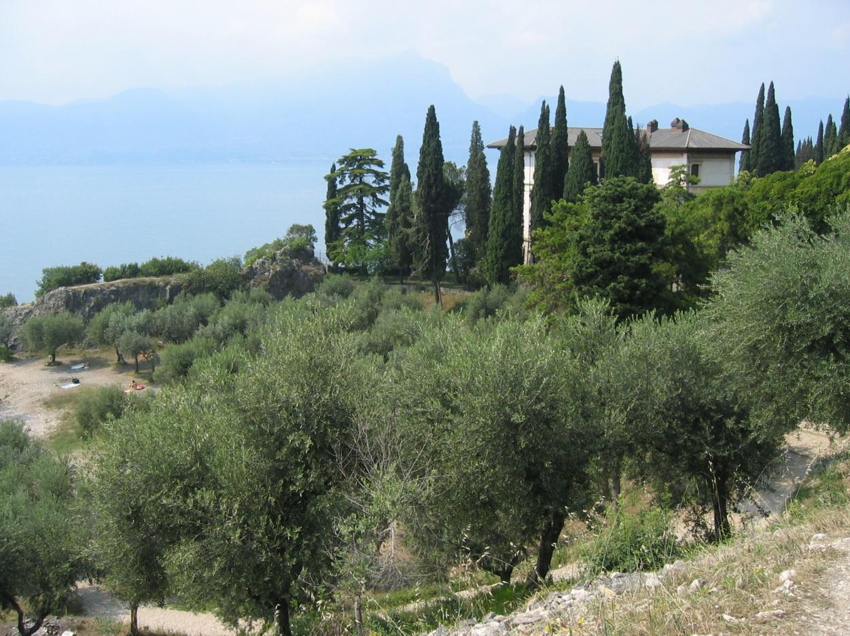 Immobilien am Lago di Garda mit Ausblick