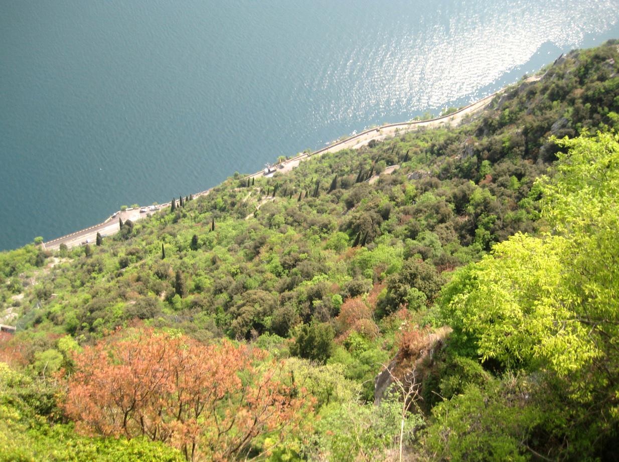 Blick runter zum Gardaseeufer